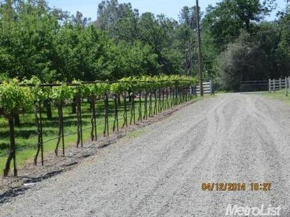 7095 County Road 49  Guinda, CA MLS# 14022024