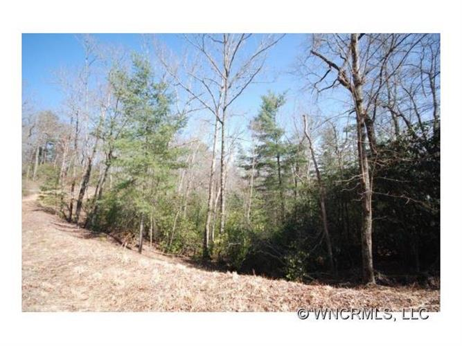 157 Springhouse Trail, Brevard, NC 28712