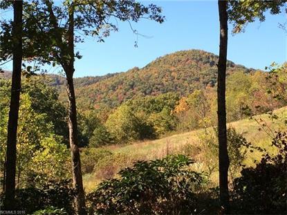 16 Smokey Ridge Trail Arden, NC MLS# 3141807