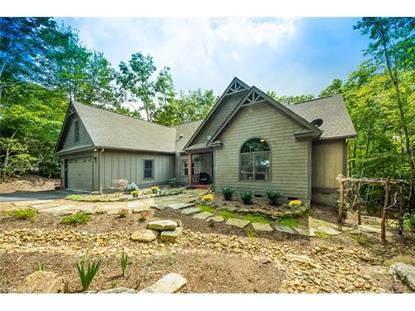 3094 Connestee Trail Brevard, NC MLS# 3148402