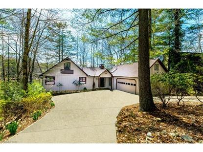 878 Middle Connestee Trail Brevard, NC MLS# 3158031