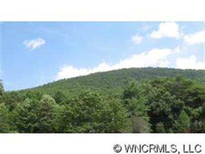 000 Seldom Home Drive , Black Mountain, NC
