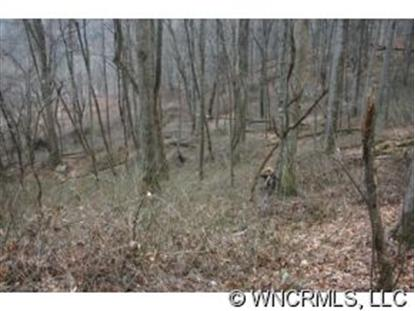 Lot 16 Coyote Hollow Road, Waynesville, NC