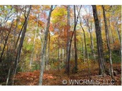 000 Hunters Ridge , Brevard, NC