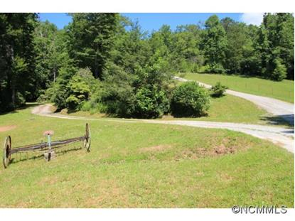 3 Sal Tom Creek  Brevard, NC MLS# 543100