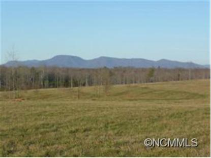 0 Collinsville Road  Columbus, NC MLS# 555219