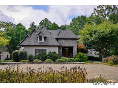330 Sabrelilly Lane  Columbus, NC MLS# 565001