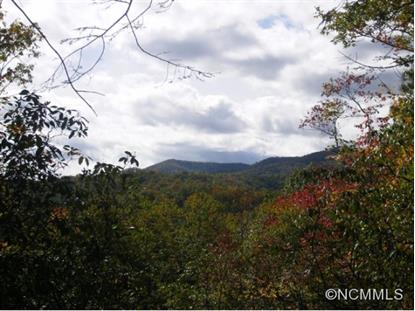 Camp 6 Long Branch Road  Brevard, NC MLS# 570229