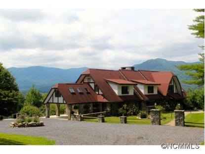 1192 Rabbit Skin Road  Waynesville, NC MLS# 570502