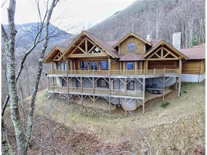 1310 WINDING CREEK Drive Waynesville, NC MLS# NCM569234