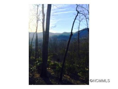 7 Wood Lily Trail  Arden, NC MLS# NCM575744