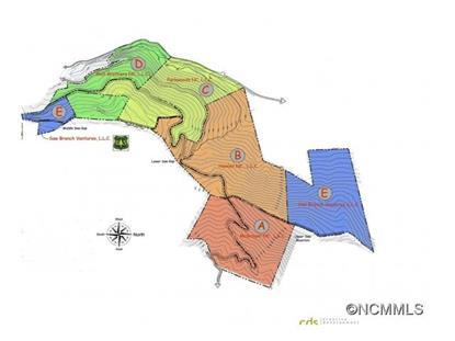 0 Box Turtle Drive Candler, NC MLS# NCM582585