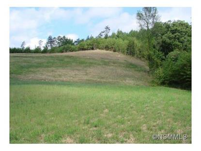 00 Sheppard Branch Road Weaverville, NC MLS# NCM583481