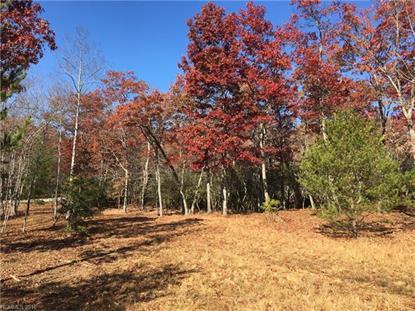 1905 White Tree Trail Arden, NC MLS# NCM590435