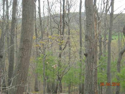 Lot 11, Lot 12 Asper Hill Rd Millerstown, PA MLS# 10249844