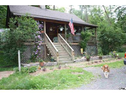 126 Fallen Cabin Lane Landisburg, PA MLS# 10250153