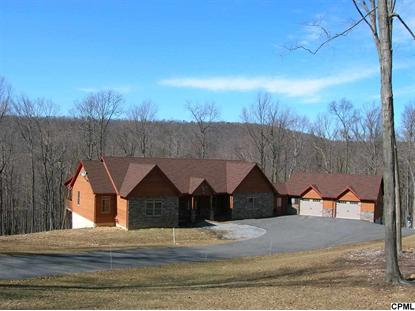 1699 SHEAFFERS VALLEY RD Landisburg, PA MLS# 10250728