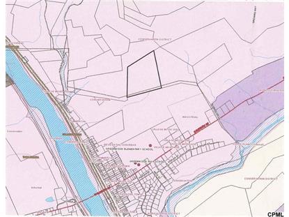 Lot 2 greenwood township Millerstown, PA MLS# 10251298