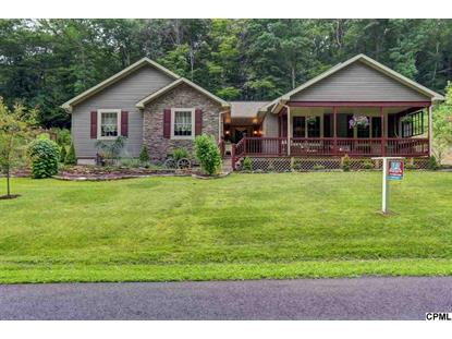 111 ORCHARD ROAD Millerstown, PA MLS# 10255818