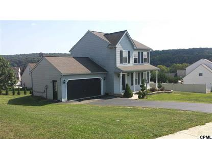 55 Burberry Ln Mount Wolf, PA MLS# 10259202