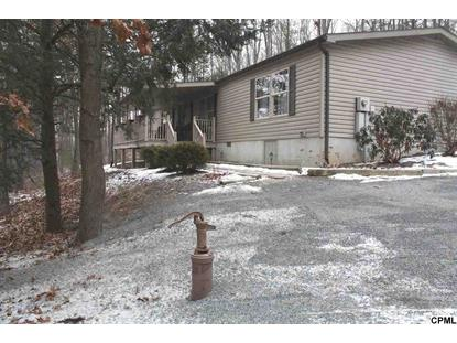 141 Cottontail Drive Millerstown, PA MLS# 10263727