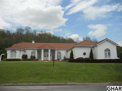 295 Cornfield Circle Lewistown, PA MLS# 10269503