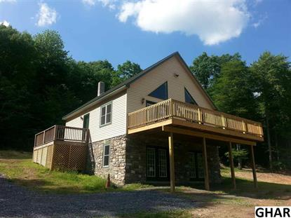 3023 Laurel Run Road Landisburg, PA MLS# 10270002
