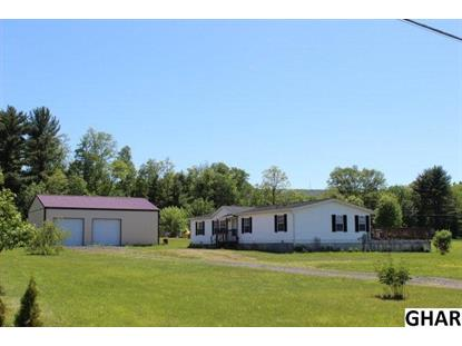 137 Natures Road Pine Grove, PA MLS# 10271046