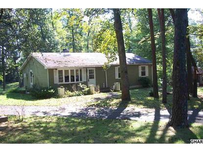 451 Mountain Road Liverpool, PA MLS# 10276012