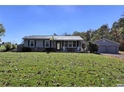 38 KANSAS ROAD Landisburg, PA MLS# 10279540
