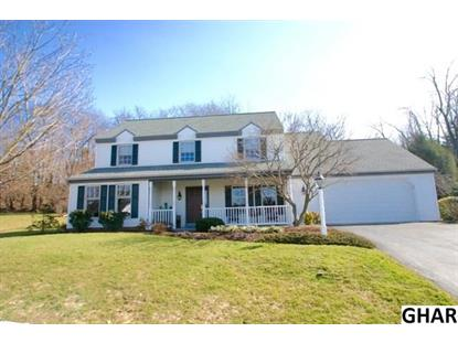 40 Wineberry Court Elizabethtown, PA MLS# 10282283