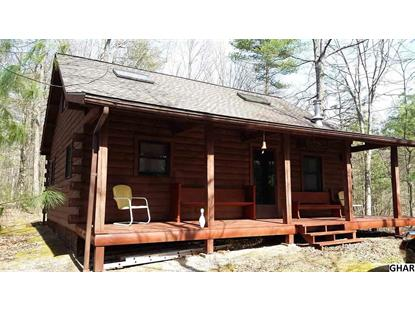 22892 Hollow Road Shade Gap, PA MLS# 10282536