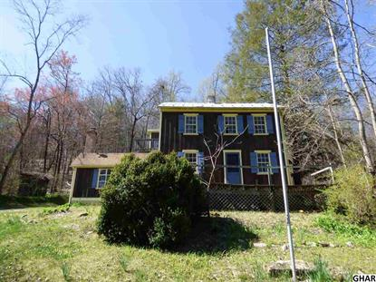 450 Mountain Road Liverpool, PA MLS# 10284562