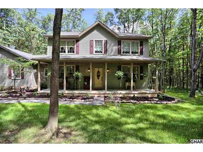 435 Zeiders Road Millerstown, PA MLS# 10288518