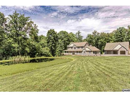 289 Wildcat Trail Liverpool, PA MLS# 10290620