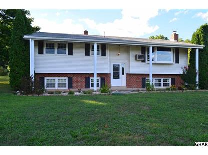 814 Hunters Valley Road Liverpool, PA MLS# 10291094