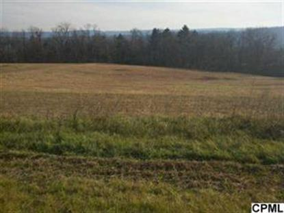 Lot 2 TBB Pintail Ave. , Duncannon, PA