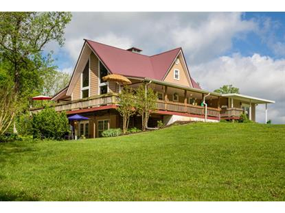 145 County Road 863  Etowah, TN MLS# 1226564