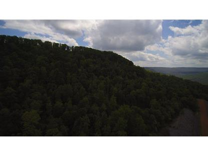 765 Bluebird Lane  Monteagle, TN MLS# 1245461