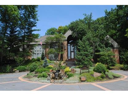370 Meadow Creek Drive Ann Arbor, MI MLS# 3230641