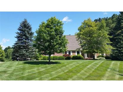 10321 Timber Ridge Drive Milan, MI MLS# 3232351