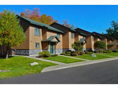 21 Morningside, Dunn Way  Lake Placid, NY MLS# 149114