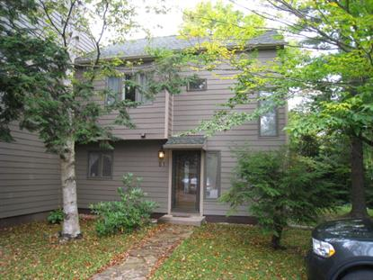 5 Hemlock Way, E1  Lake Placid, NY MLS# 149846