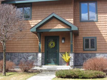 19 Dunn Way  Lake Placid, NY MLS# 151665