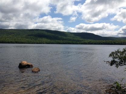 - Chazy Lake Road  Dannemora, NY MLS# 151782