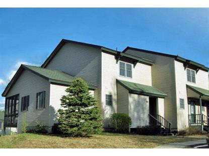 83 Fir Way Pinehill 60  Lake Placid, NY MLS# 152173