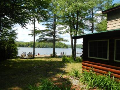 209 Lower Pond Way  Elizabethtown, NY MLS# 153276