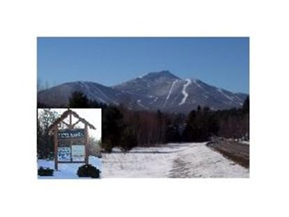 17 Green Mountain Drive  Lot 1&2C Jay, VT MLS# 4215655