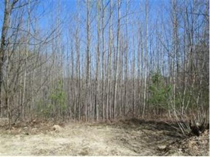 Lot 4 Raccoon Hill Road Andover, NH MLS# 4181945