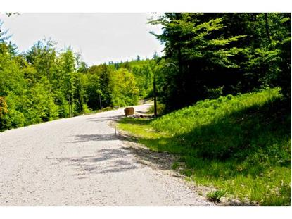 Lot 5 Ridgewood Lane Alton, NH MLS# 4248171
